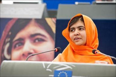 © European Union 2013 - European Parliament. (Attribution-NonCommercial-NoDerivs Creative Commons license).